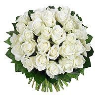 Le Bouquet 31 Roses Blanches Platine